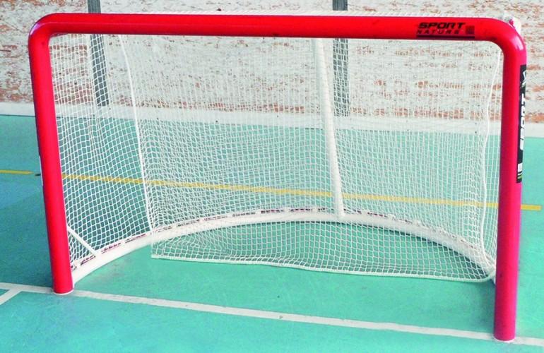 roller-hockey